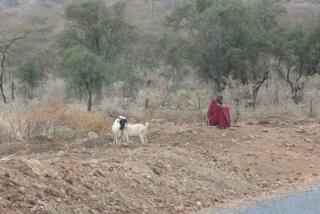 masai14